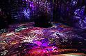 Flowers by Naked digital art installation in Tokyo