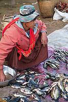 Myanmar, Burma.  Man Selling Fish at Local Market, Inle Lake, Shan State.