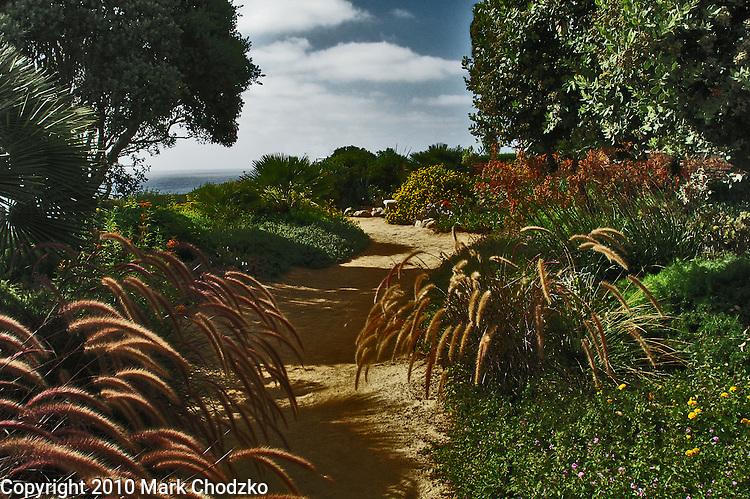 Garden path near the ocean.