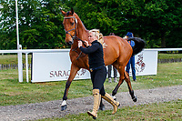 GBR-Nicole Mills presents Fearless during the First Horse Inspection for the CCI-L3* Section B.  2019 GBR-Saracen Horse Feeds Houghton International Horse Trial. Wednesday 22 May. Copyright Photo: Libby Law Photography