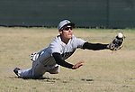 Pioneer High School right fielder makes a diving catch.