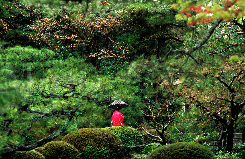 Japan. Kyoto. Geisha carrying a paper umbrella walks through the Heian Gardens