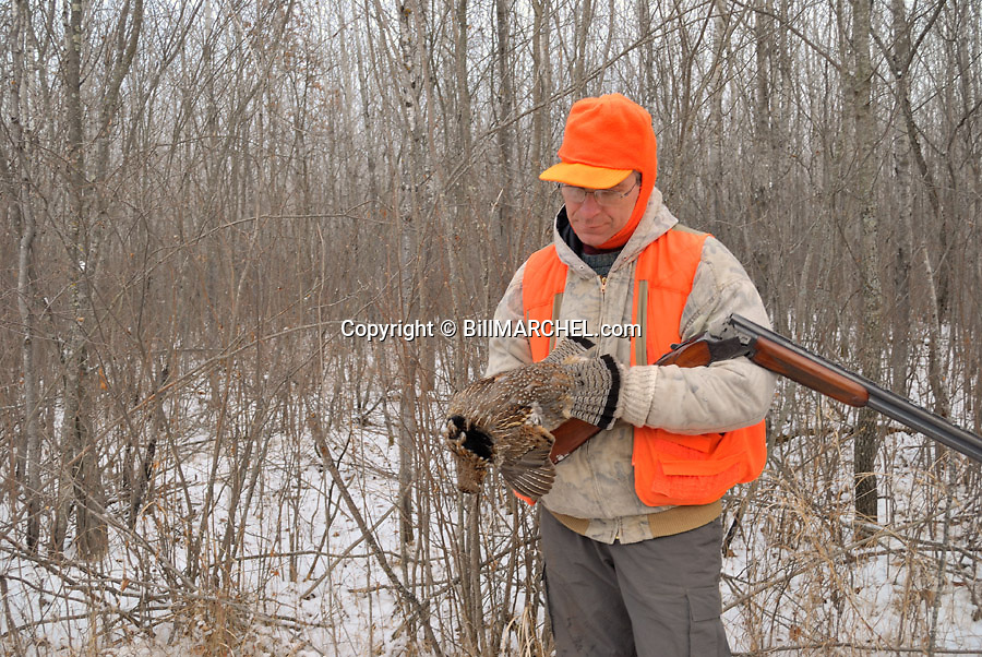 00515-076.15  Ruffed Grouse hunter displays bagged grouse during a late season hunt.  Snow, aspen, double barrel.