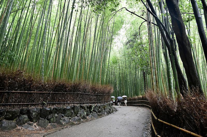 Kyoto on Wednesday 13 July 2016.<br /> Photo by Masanori Udagawa. <br /> www.photowellington.photoshelter.com.
