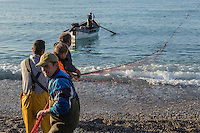 Europe/France/Provence-Alpes-Côte d'Azur/Alpes-Maritimes/Cagnes-sur-Mer: Péche à la senne de la Poutine //  Europe, France, Provence-Alpes-Côte d'Azur, Alpes-Maritimes, Cagnes sur Mer: Poutine , Gianchetti Seine fishing