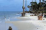 Couple Fishing On Beach