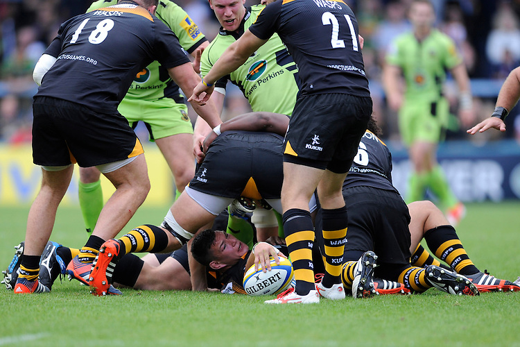 Tom Lindsay of Wasps makes the ball available during the Premiership Rugby Round 2 match between Wasps and Northampton Saints at Adams Park on Sunday 14th September 2014 (Photo by Rob Munro)