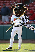 May 5th 2008:  Mascot Buster T. Bisons of the Buffalo Bisons, Class-AAA affiliate of the Cleveland Indians, during a game at Dunn Tire Park in Buffalo, NY.  Photo by Mike Janes/Four Seam Images