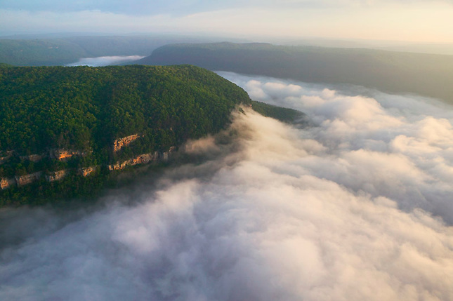 Bluffs of Prentice Cooper State Forest with fog