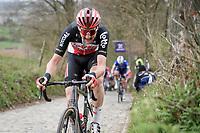 Tim Wellens (BEL/Lotto-Soudal) up the Koppenberg<br /> <br /> 105th Ronde van Vlaanderen 2021 (MEN1.UWT)<br /> <br /> 1 day race from Antwerp to Oudenaarde (BEL/264km) <br /> <br /> ©kramon