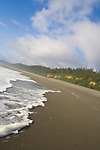 California, Wilderness coast, Pacific Ocean, Prairie Creek Redwoods State Park, Humboldt County, California, USA, sea foam, beach,