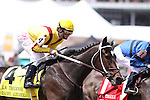 Rachel Alexandra with Calvin Borel up cruises down the back stretch in The La Troinne (grII) at Churchill Downs. 04.30.2010