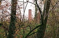 Cogliate (Milano), Parco delle Groane. La ciminiera della antica fornace Pizzi immersa nel bosco --- Cogliate (Milan), regional park Parco delle Groane. The smokestack of ancient furnace Pizzi nestled in the woods