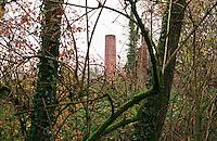 Cogliate (Milano), Parco delle Groane. La ciminiera della antica fornace Pizzi immersa nel bosco --- Cogliate (Milan), regional park Parco delle Groane. The smokestack of ancient furnace Pizzi nestled in the woods