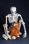 Skeleton plays with antique teddy bear.