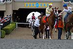 AUG 3,2014:Skyway,ridden by Stewart Elliot,wins the Best Pal Stakes at Del Mar in Del Mar,CA. Kazushi Ishida/ESW/CSM