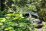 Camping in rainforest near Hood Canal at Twanoh State Park, Washington, USA