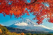 Tom Mackie, LANDSCAPES, LANDSCHAFTEN, PAISAJES, photos,+Asia, Japan, Japanese, Mount Fuji, Tom Mackie, Worldwide, autumn, autumnal, blue, composition, fall, framing, horizontal, hor+izontals, landmark, landmarks, maple, natural landscape, nobody, red, scenery, scenic, seasons, tourist attraction, tree, tre+es, volcano, world wide, world-wide,Asia, Japan, Japanese, Mount Fuji, Tom Mackie, Worldwide, autumn, autumnal, blue, composi+tion, fall, framing, horizontal, horizontals, landmark, landmarks, maple, natural landscape, nobody, red, scenery, scenic, se+,GBTM190625-1,#l#, EVERYDAY