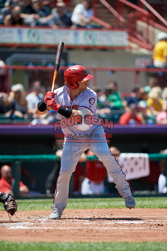 Harrisburg Senators Spencer Kieboom (14) at bat during an Eastern League game against the Erie SeaWolves on June 30, 2019 at UPMC Park in Erie, Pennsylvania.  Erie defeated Harrisburg 4-2.  (Mike Janes/Four Seam Images)