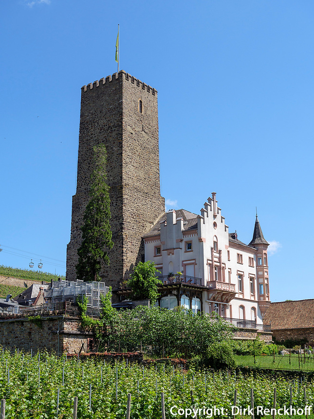 Boosenburg, Rüdesheim, Hessen, Deutschland, Europa, UNESCO Weltkulturerbe<br /> castle Boosenburg, Rüdesheim, Hesse, Germany, Europe