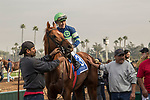 ARCADIA, CA  DECEMBER 26:  #3 Giant Expectations, ridden by Gary Stevens, in the winners circle after winning the San Antonio Stakes (Grade ll) on December 26, 2017 at Santa Anita Park in Arcadia, CA. (Photo by Casey Phillips/ Eclipse Sportswire/ Getty Images)