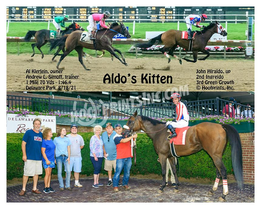 Aldo's Kitten winning at Delaware Park on 8/18/21