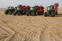 EGYPT, Farafra, potato farming in the desert, Daltex Corporation, John Deere tractors with Grimme harvesting machines/ AEGYPTEN, Farafra, Daltex Corporation, Kartoffelanbau in der Wueste