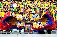 A Colombia fan in fancy dress