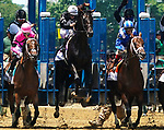 June 5, 2021: Tizamagician, #8, leaps in the air at the start of the Brooklyn Stakes on Belmont Stakes Day at the Belmont Stakes Festival at Belmont Park in Elmont, New York. Dan Heary/Eclipse Sportswire/CSM