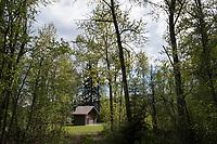 Swan Lake Campground - Dirt Road - Outhouse - Swan Lake, Montana - 19 May 2017