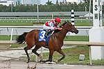 HALLANDALE BEACH, FL -APRIL 02:   #3 Go Maggie Go (KY) with jockey Luis Saez on board wins the 50th running of the Gulfstream Park Oaks GII on April 2nd, 2016 at Gulfstream Park in Hallandale Beach, Florida. (Photo by Liz Lamont/Eclipse Sportswire/Getty Images)