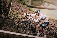 CX world champion Mathieu Van der Poel (NED/Alpecin-Fenix)<br /> <br /> 2020 Superprestige Gavere (BEL)<br /> <br /> ©kramon