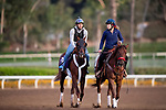 OCT 29: Breeders' Cup Juvenile  entrant Scabbard, trained by Eddie Kenneally, gallops at Santa Anita Park in Arcadia, California on Oct 29, 2019. Evers/Eclipse Sportswire/Breeders' Cup