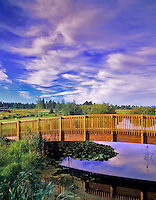 Footbridge with clouds at Sunriver Resort, Oregon