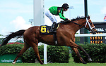 May 30, 2015  The Pizza Man (jockey Florent Geroux) wins the Opening Verse Stakes at Churchill Downs. Owner Midwest Thoroughbreds (Richard and Karen Papiese), trainer Roger A. Brueggemann. By English Channel x I Can Fan Fan (Lear Fan) ©Mary M. Meek/ESW/CSM