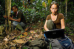 African Golden Cat (Caracal aurata aurata) biologist Laila Bahaa-el-din reviewing camera trap images on computer while Arthur Dibambo attaches camera trap to tree, Lope National Park, Gabon