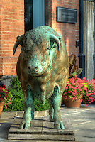 Bronze bull sculpture on the sidewalk in front of the Mira Godard Gallery in the Yorkville district of Toronto, Ontario, Canada