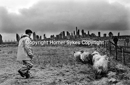 Callanish Standing Stones, Callanish Isle of Lewis and Harris,   Sheep farmer 1974 1970s UJ