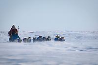 Sebastian Schnuelle runs on Norton Sound on his way to Koyuk during Iditarod 2009