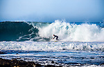 Surfing on the Coast of California