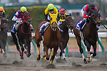 TOYOAKE,JAPAN-DECEMBER 04: Sound True #8,ridden by Takuya Ono,wins the Champions Cup at Chukyo Racecourse on December 04,2016 in Toyoake,Aichi,Japan (Photo by Kaz Ishida/Eclipse Sportswire/Getty Images)