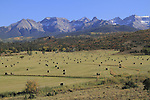 Ranch with bales of hay, Sneffels Range, Colorado