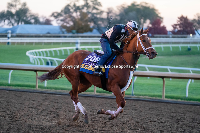 November 5, 2020: Monomoy Girl, trained by trainer Brad Cox, exercises in preparation for the Breeders' Cup Distaff at Keeneland Racetrack in Lexington, Kentucky on November 5, 2020. Scott Serio/Eclipse Sportswire/Breeders Cup/CSM