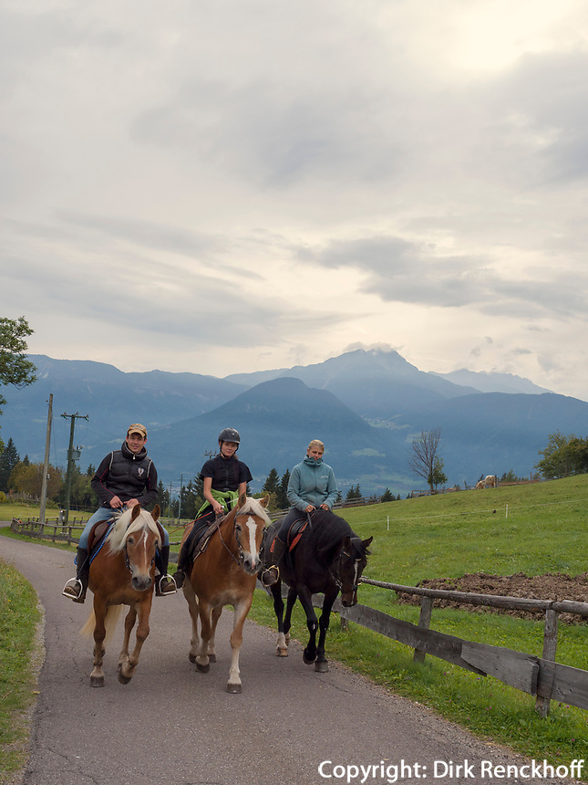 Reiter, Haflinger bei Vöran, Region Südtirol-Bozen, Italien, Europa<br /> riders on haflinger horses near Vöran, Region South Tyrol-Bolzano, Italy, Europe