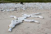 Kind, Kinder haben aus flachen Steinen ein Tier, Drachen, Krokodil auf dem Sandstrand gelegt, Naturkunst am Strand, Strandkunst, Meer, Küste,