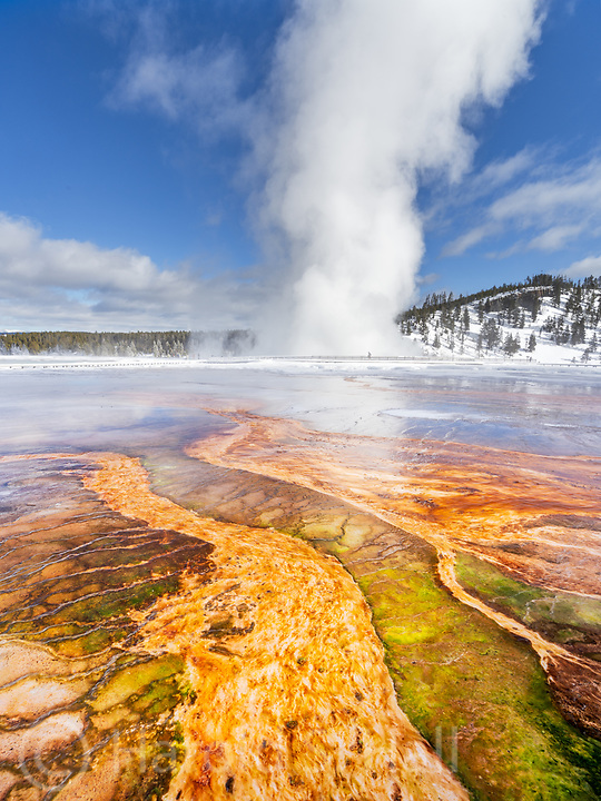 The geysers in Yellowstone Park billow a lot of steam on cold winter mornings.  This is Midway Geyser Basin and Excelsior geyser in the background.