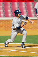 Justin Leeson #14 of the Georgetown Hoyas squares to bunt against the Delaware State Hornets at Gene Hooks Field on February 26, 2011 in Winston-Salem, North Carolina.  Photo by Brian Westerholt / Four Seam Images