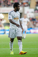 Saturday 4th  October 2014 Pictured: Wilfried Bony of Swansea City<br /> Re: Barclays Premier League Swansea City v Newcastle United at the Liberty Stadium, Swansea, Wales,UK