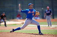 New York Mets Pitcher Gabriel Llanes (91) during a minor league Spring Training game against the St. Louis Cardinals on March 28, 2017 at the Roger Dean Stadium Complex in Jupiter, Florida.  (Mike Janes/Four Seam Images)
