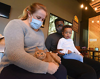 GOOD HOMES FOR KITTENS<br />Lindsey Otabil pets an orange tabby kitten on Saturday Nov. 14 2020, while sitting with her husband, Yoofi Otabil, and their son, Judson, 2, at a kitten adoption event at New Province Brewing in Rogers. Best Friends Animal Society and the brewery hosted the event to find good homes for kittens, said Lauren Clingenpeel with Best Friends Animal Society. Kittens, all spayed or neutered, were from Wilson Zoo, an animal refuge in Benton County, she said. People adopting kittens paid an adoption fee at the event. Go to nwaonline.com/201115Daily/ to see more photos.<br />(NWA Democrat-Gazette/Flip Putthoff)